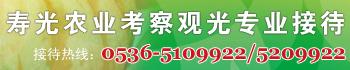 中国寿光第十四届菜博会专业接待